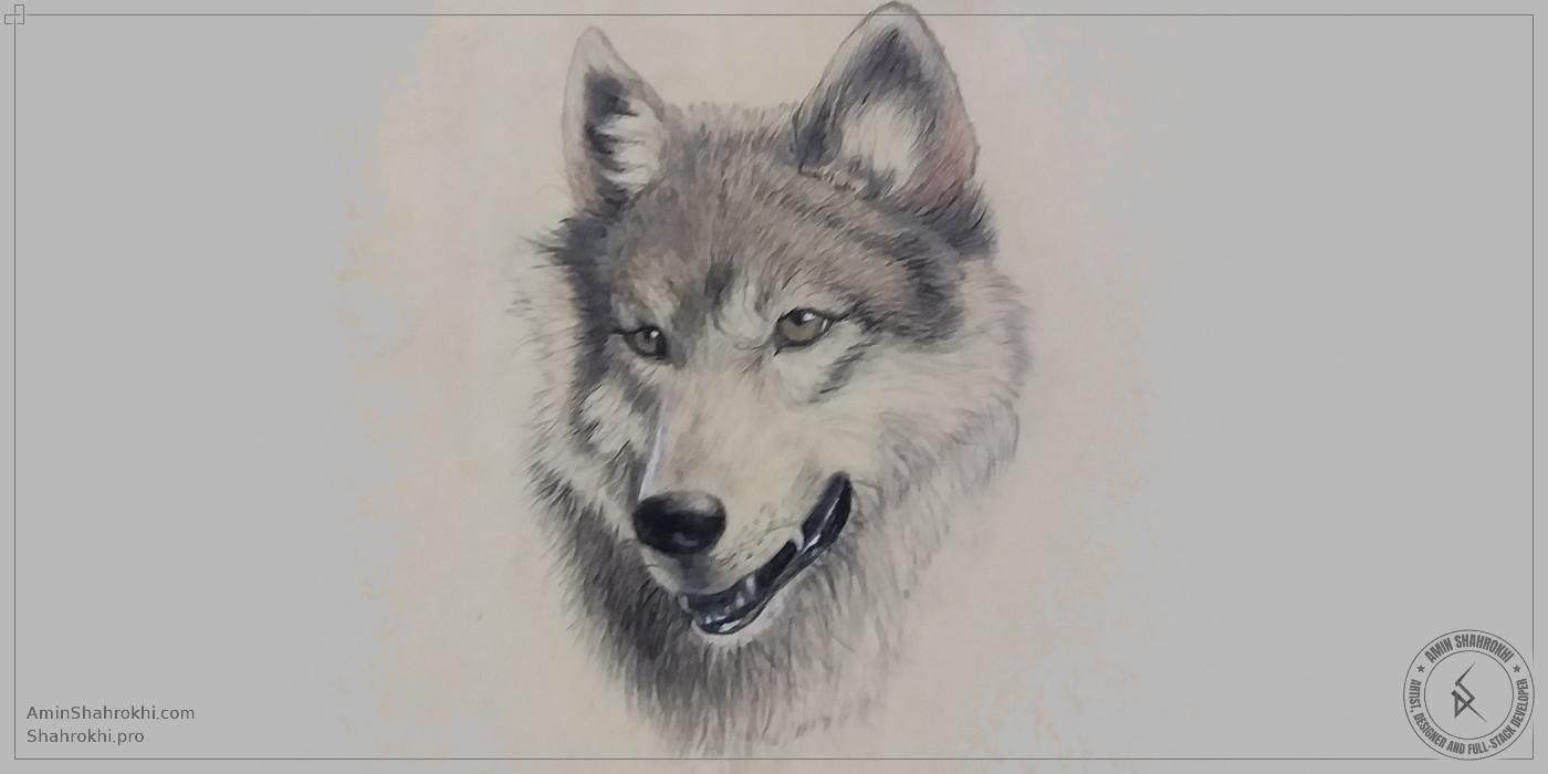 Handmade Pencil Drawing